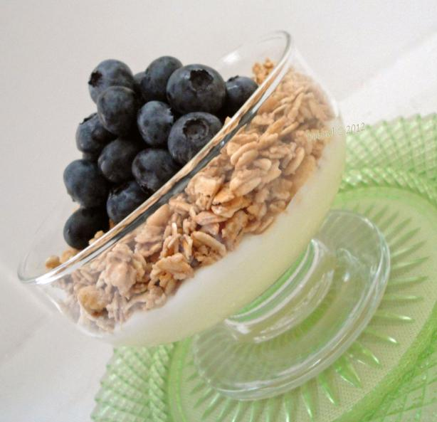 Blueberry Granola Yogurt