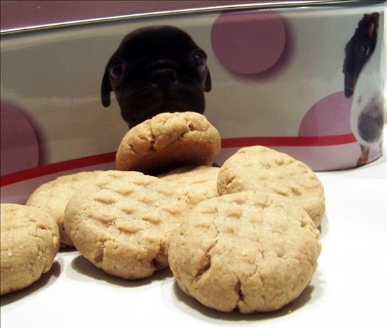 Peanut Butter Doggie Cookies