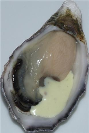 Fire and Ice Oysters with Horseradish Sauce