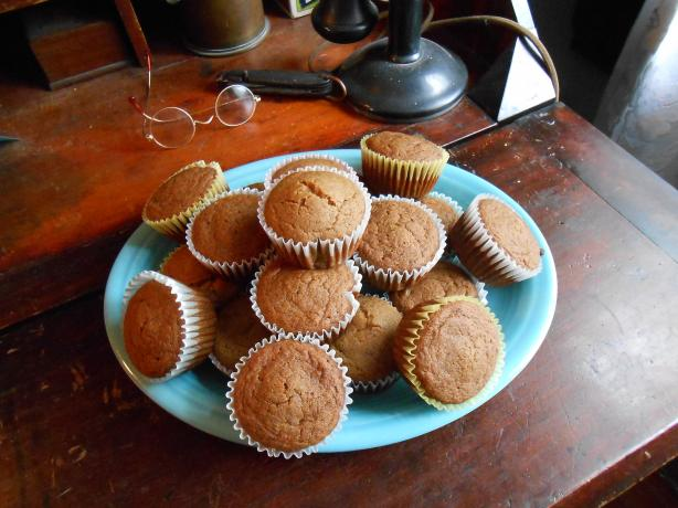 Gluten Free Casein Free Applesauce Muffins