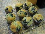 Gluten, Dairy & Cane Sugar Free Blueberry Muffins