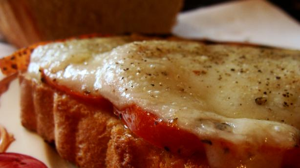 Roasted Tomato and Swiss Cheese Sandwich
