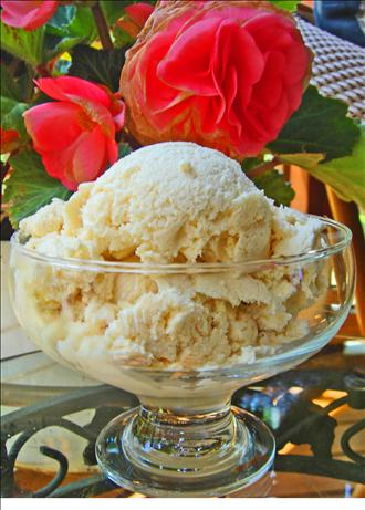 Jon's Sugar free French Vanilla Ice Cream