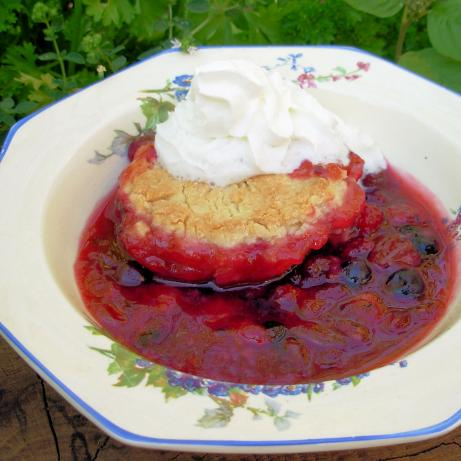 Summer Berry Dumpling Cobbler
