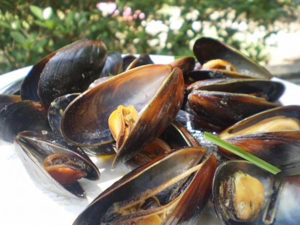 Karen's Smooth French Milk Mussels