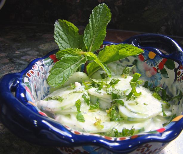 Cucumber Salad (Turkish Cacick)