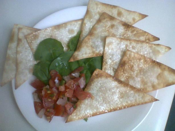 Low-Fat (Wonton Egg Roll Gyoza) Chips With Salsa