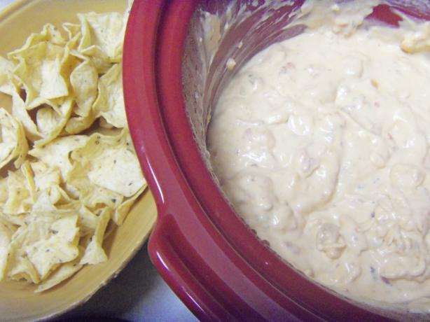 Warm Cheesy Salsa Dip