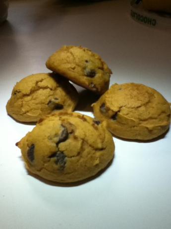Erin's Pumpkin Chocolate Chip Cookies