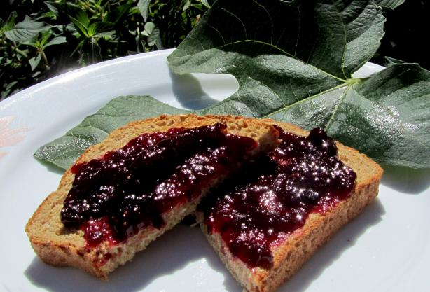 Blueberry and Fig Jam-Low or No Sugar