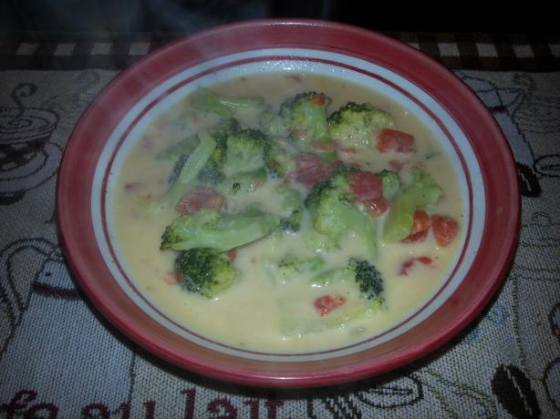 Weight Watchers Broccoli Cheese Soup - 2 Pts Per Cup