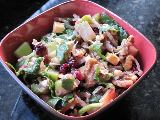 Apple Salad With Cranberry Vinaigrette