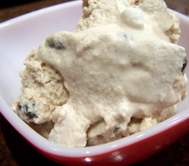 Spiced Rum Raisin Ice Cream