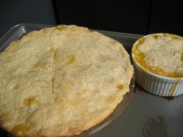 Basic Pie Crust I