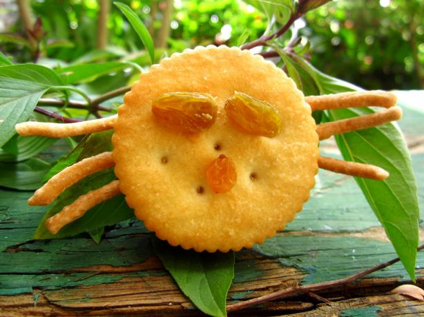 Halloween Spooky Spider Snacks (Fun for the Kids to Make)