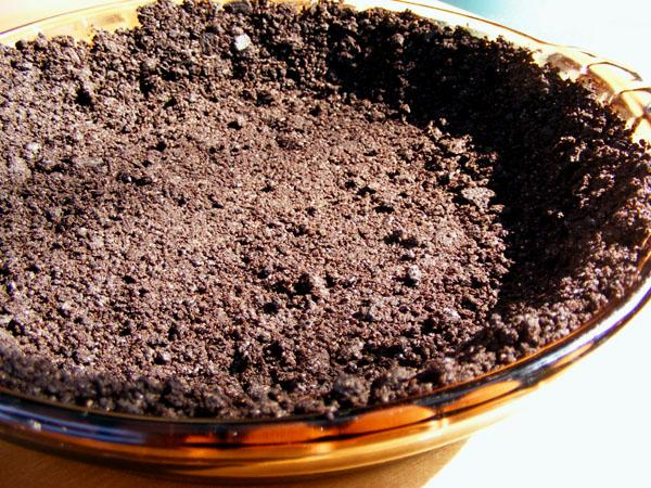 Yummy Chocolate or Gingersnap Cookie Crumb Pie Crust