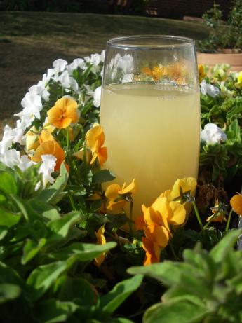 Refreshing Lemon Barley Water