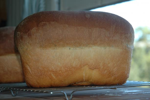 Blue Ribbon White Bread