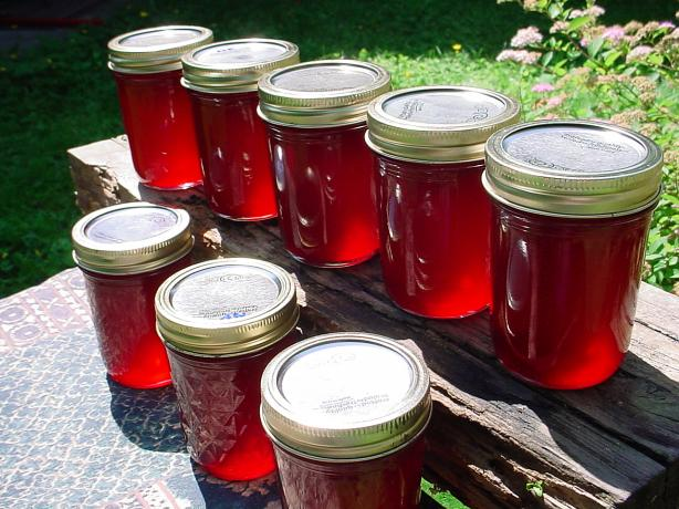 Fireweed Jelly