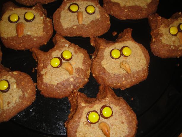 Sarah's Owl Cookies