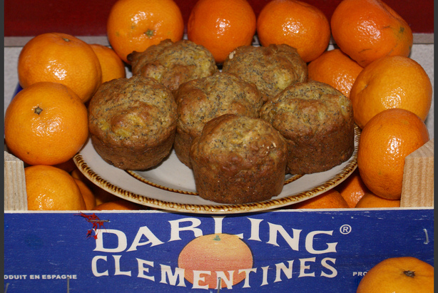 Clementine Poppy Seed Muffins