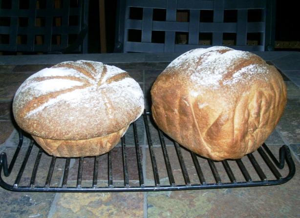 Non-Dense Delicious Whole Wheat Bread