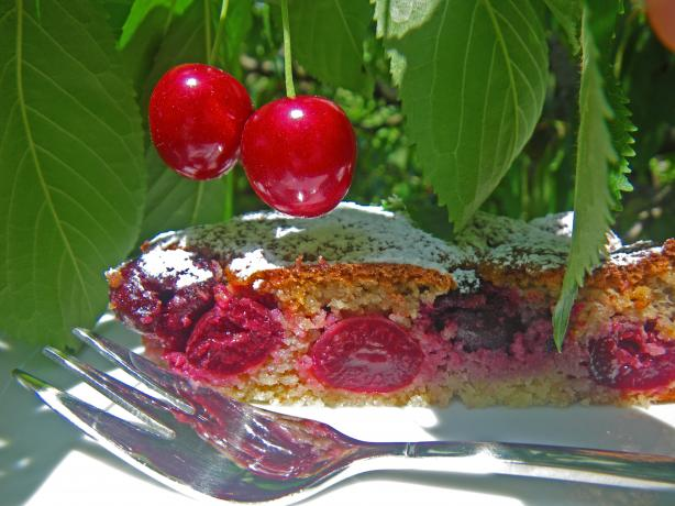 Italian Old Fashioned Cherries Cake or Dolce Di Ciliegie
