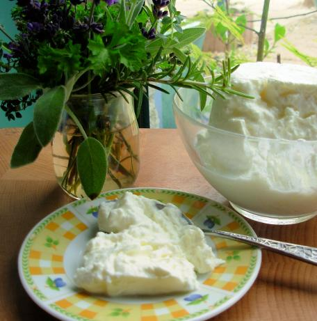 Yoghurt Cheese (Labna)