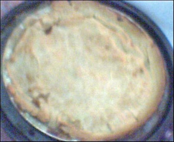 Hoender Pastei ( Boer Chicken Pie )