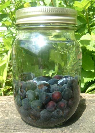 Berry Aquavit