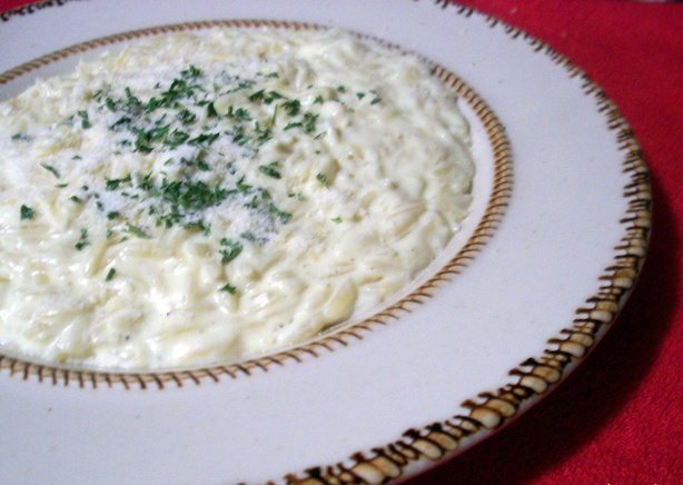 Creamy Small Pasta and Cheese