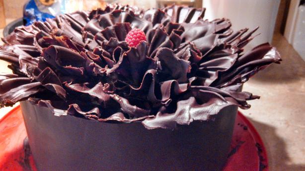 Chocolate Raspberry Ruffle Cake