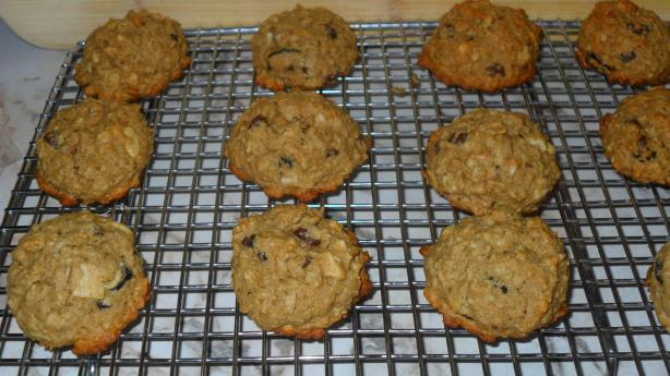 Honey Oatmeal Breakfast Cookies