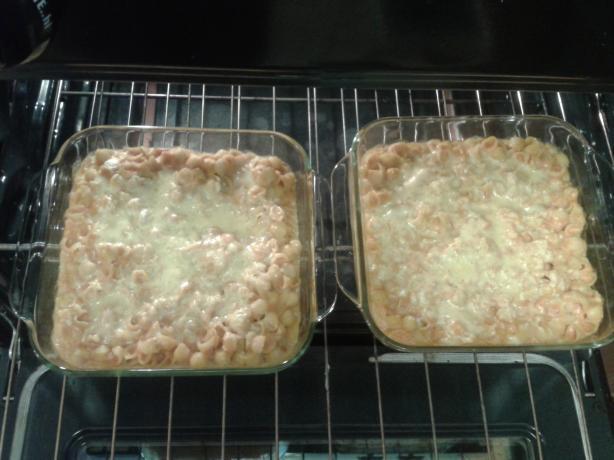 Pumpkin Cheese Macaroni