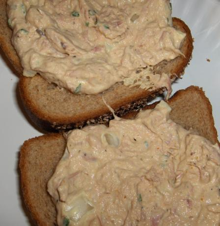 Curry Tuna Dip/spread