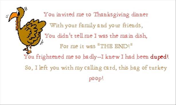 Turkey Poop