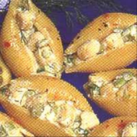 Bay Scallops & Shells