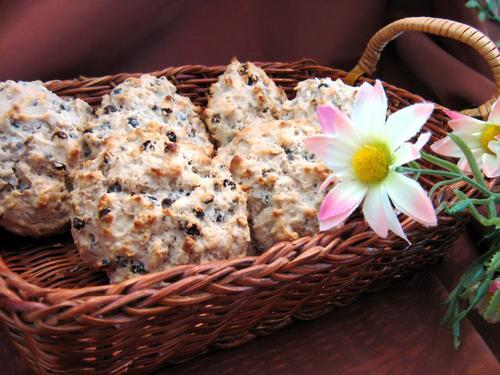 Lite Oatmeal Scones