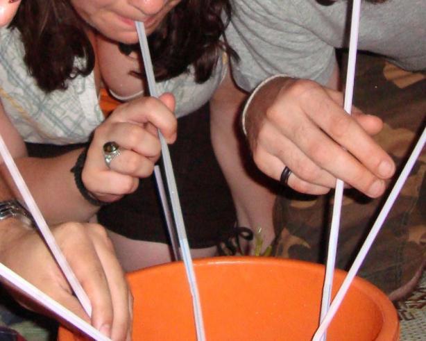 Refreshing Vodka Bucket