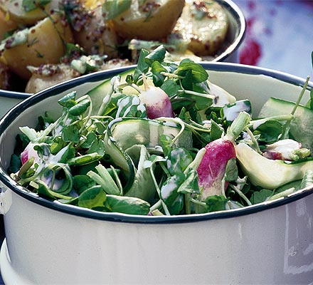 Crunchy watercress, cucumber & radish salad