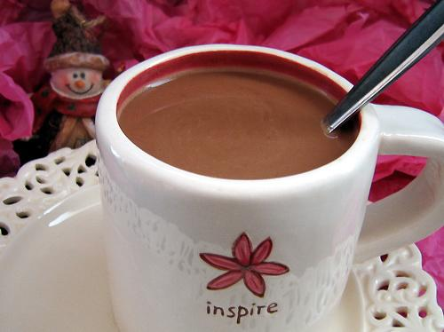 Low Carb Sugar Free Spiced Cocoa