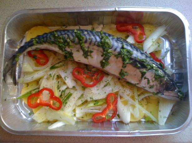Baked Mackerel on a Vegetable Bed