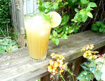 Zinger Green Tea Drink