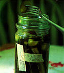 Kosher Dill Pickles