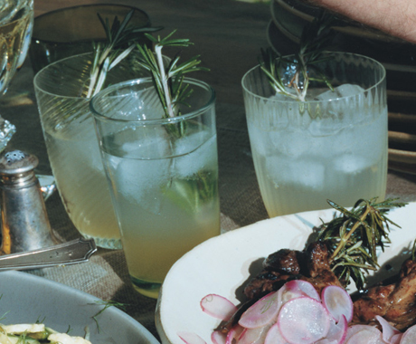 Vodka Rosemary Lemonade Fizz