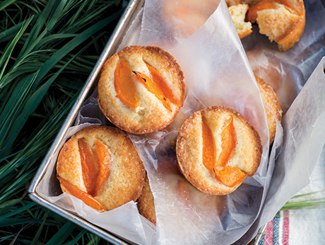 Little Apricot Cakes