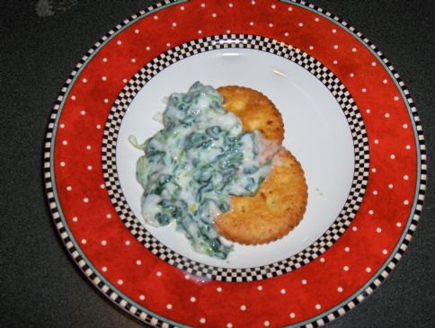 Spinach and Green Onion Dip