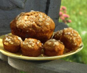 Applesauce-Rhubarb Muffins