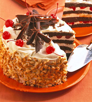 Nutty Mocha Layer Cake