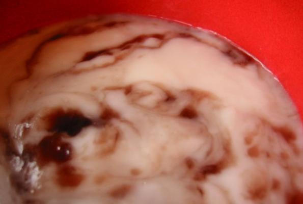 Amazing Haupia (Coconut) Pudding/Fruit Dip